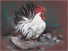 Canvas print  Rooster - Mary Want