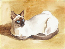 Wall sticker  Siamese cat - Mary Want