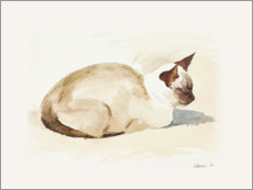 Wood print  Resting kitten, watercolor - Mary Want