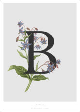 Canvas print  B is for Borage - Charlotte Day