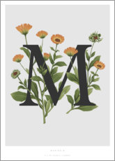 Foam board print  M is for Marigolds - Charlotte Day