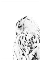 Wood  Snow owl - Art Couture