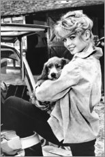 Foam board print  Brigitte Bardot with puppy - Celebrity Collection