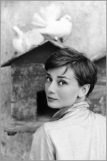 Wood print  Audrey Hepburn at the dovecote - Celebrity Collection