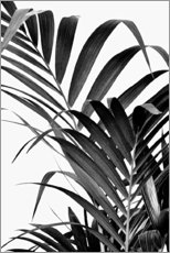 Premium poster  Palm leaves II - Art Couture