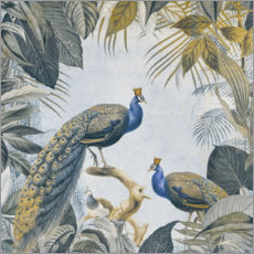 Gallery print  Fantastic Peacock Kings - Andrea Haase