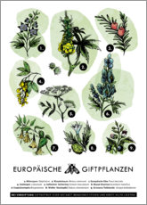 Wood print  European poisonous plants (German) - Velozee