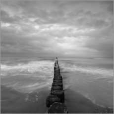 Wood print  Groynes on the Baltic Sea - Thomas Wegner