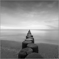 Acrylic print  Groynes on the Baltic Sea - Thomas Wegner