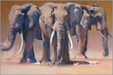 Premium poster Three elephants