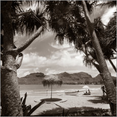 Gallery print  Holidays under palm trees in the 1930s