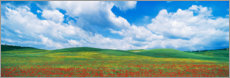 Premium poster  The green hills of Tuscany