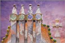 Canvas print  Detail of Casa Batlló in Barcelona - Rainer Mirau