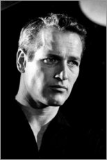 Aluminium print  Paul Newman - Celebrity Collection