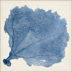 Premium poster  Sea fan blue - Vision Studio