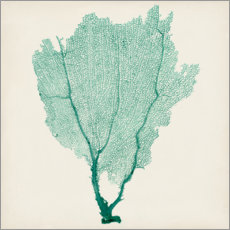 Gallery print  Sea fans emerald - Vision Studio