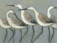 Canvas print  Beach birds - Norman Wyatt