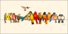 Foam board print  Bird Menagerie I - Wendy Russell