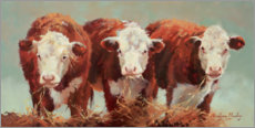 Aluminium print  Three of a Kind - Carolyne Hawley