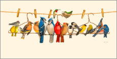 Wood print  Bird Menagerie II - Wendy Russell