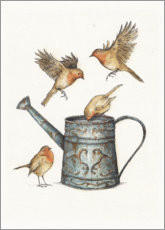 Wood print  Robins at the watering can - Mike Koubou