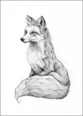 Wall sticker  Vulpes vulpes, black and white - Mike Koubou