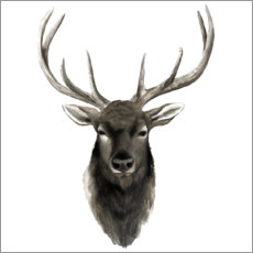Wall sticker Deer portrait