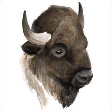 Wall sticker Buffalo portrait