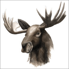 Wall sticker Moose portrait