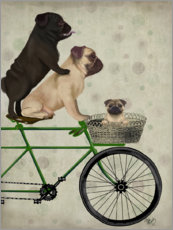 Premium poster Pugs on Bicycle