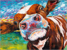 Canvas print  Curious cow II - Carolee Vitaletti
