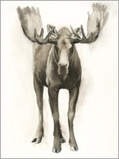 Canvas print  Majestic moose - Grace Popp