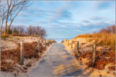 Premium poster Beach path on Usedom