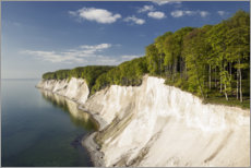 Premium poster Chalk cliffs in spring