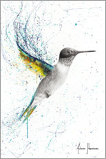 Premium poster Finding Home Hummingbird