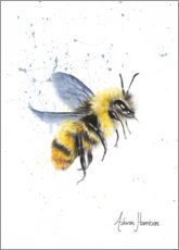 Canvas print  Bumble Bee - Ashvin Harrison