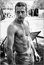 Premium poster  Paul Newman - no shirt - Celebrity Collection