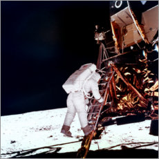 Premium poster  Edwin Buzz Aldrin on the moon
