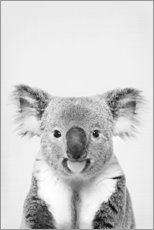 Premium poster  Friendly koala - Art Couture