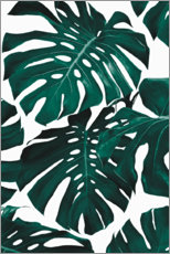 Gallery print  Monstera leaves - Sisi And Seb