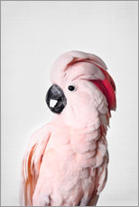 Wood print  Pink parrot - Sisi And Seb
