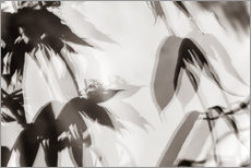 Wall sticker Leaves 3