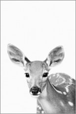 Acrylic print  Young deer - Art Couture