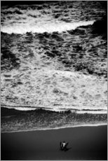 Acrylic print  Pre-surf on the beach - Fabio Sola