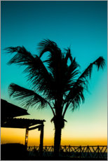 Premium poster Palm tree in blue sunset
