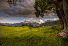 Premium poster Alpine meadow in front of the Watzmann