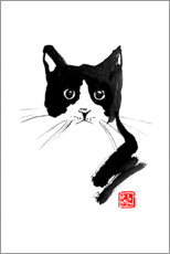 Aluminium print  Cat black and white - Péchane