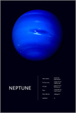 Premium poster  Neptune (English) - Art Couture