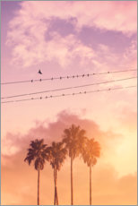 Premium poster  Birds on a wire - Jonas Loose