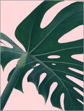 Foam board print  Monstera Portrait - Emanuela Carratoni